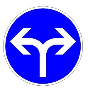 Verkehrszeichen (209-31) -  StVO Vorgeschriebene Fahrtrichtung - rechts und links