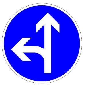 Verkehrszeichen (214-10) -  StVO Vorgeschriebene Fahrtrichtung - geradeaus und links